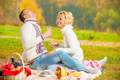 Happy couple relaxing on a picnic Royalty Free Stock Photography