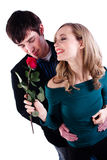 Happy couple with rose Stock Photos