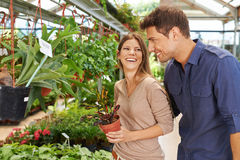 Happy couple shopping in garden center. Happy couple shopping for green plants in a garden center stock photography