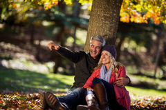 Happy couple sitting under tree at park Stock Image