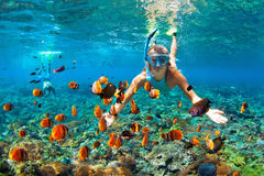Happy couple snorkeling underwater over coral reef. Happy family - couple in snorkeling masks dive deep underwater with tropical fishes in coral reef sea pool stock photos