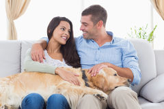 Happy couple stroking Golden Retriever on sofa Stock Photo