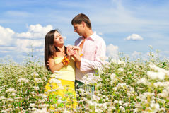 Happy couple on a summer lawn. Happy couple on a lawn Stock Photography