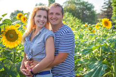 Happy couple among sunflowers Stock Photos