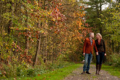 Happy couple is taking a walk in the forest Stock Images