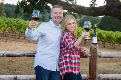 Happy couple tasting wine royalty free stock photos