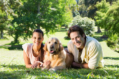 Happy couple with their dog in the park. On a sunny day Royalty Free Stock Images