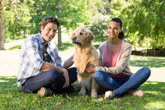 Happy couple with their dog in the park stock images