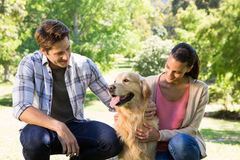 Happy couple with their dog in the park. On a sunny day Stock Photos