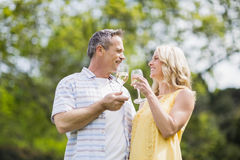 Happy couple toasting with champagne Stock Images