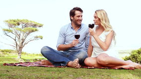 Happy couple toasting and drinking red wine. Portrait of a couple toasting and drinking red wine at the picnic stock footage