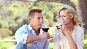 Happy couple toasting and drinking red wine. Portrait of a couple toasting and drinking red wine at the picnic stock video footage