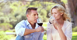 Happy couple toasting and drinking red wine. Portrait of a couple toasting and drinking red wine at the picnic stock video