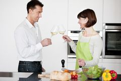 Happy Couple Toasting With Glass Of Wine Royalty Free Stock Photos