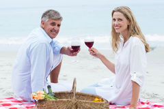Happy couple toasting with red wine during a picnic Royalty Free Stock Photo
