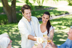 Happy couple toasting with their family Royalty Free Stock Photography