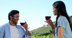 Couple toasting wine glasses in the farm. Happy couple toasting wine glasses in the farm stock video footage