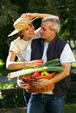 Happy couple in vegetable garden. Portrait of a smiling couple holding basket of vegetables Stock Image