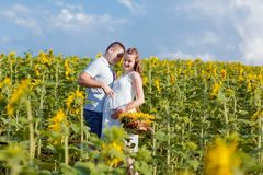 Happy couple waiting baby in sunny day, sunflowers Authentic lifestyle image. place for text royalty free stock photos