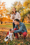 Happy couple walking in autumn park and playing with dogs. Happy young relaxed couple walking in autumn park and playing with dogs stock photos