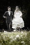 Happy couple on wedding day. Happy couple walking through field of wildflowers on their wedding day Stock Photo