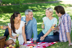 Happy couples having picnic at the park Stock Photography