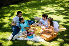 Happy couples interacting while having a glasses of wine. In park Stock Image