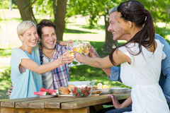 Happy couples toasting at the park Royalty Free Stock Image