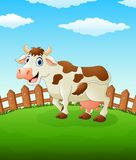 Happy cow cartoon on the field Stock Images