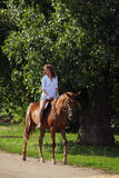 Happy cowgirl on brown horse Royalty Free Stock Photography