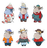 Happy cows.Clip-Art. Cartoon. Set of various cows in warm clothes stock illustration