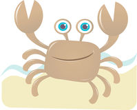 Happy Crab Stock Photos