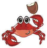 Crab hold a food Royalty Free Stock Photos