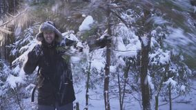 Happy crazy man shaking snow trees in winter forest. Hd stock footage