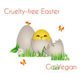 Happy Cruelty-free Easter Royalty Free Stock Images