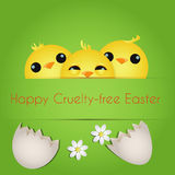 Happy Cruelty-free Easter. /Vegan Easter card with three cute chicks Stock Photography