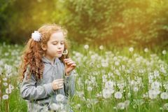 Happy curly girl blowing dandelion royalty free stock photos