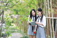 Two best friends bestie Asian Chinese Happy young cute adorable lovely student youth read book in park garden school summer stock photo