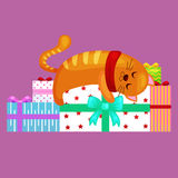Happy cute cat with christmas gifts, kitten with christmas presents box Stock Image