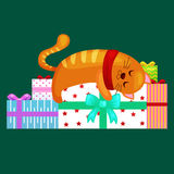 Happy cute cat with christmas gifts, kitten   presents box, animal holidays vector illustration Stock Photos