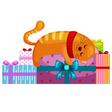 Happy cute cat with christmas gifts, kitten   presents box, animal holidays vector illustration Royalty Free Stock Photos