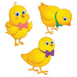 Happy Cute Chicks Vector Illustration. Eps10 Royalty Free Stock Images
