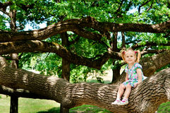 Happy cute girl sitting on branch huge tree Stock Photography