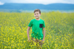 Happy cute handsome little kid boy on green grass lawn with blooming yellow dandelion flowers on sunny spring or summer day. Littl Stock Image