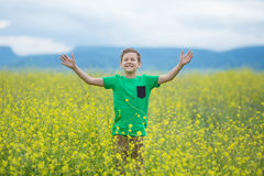 Happy cute handsome little kid boy on green grass lawn with blooming yellow dandelion flowers on sunny spring or summer day. Littl Royalty Free Stock Images
