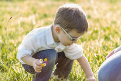 Happy cute kid picking flowers in a field Royalty Free Stock Photos