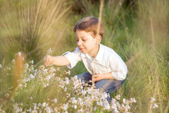 Happy cute kid picking flowers in a field Royalty Free Stock Images
