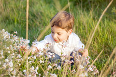 Happy cute kid picking flowers in a field Stock Photo