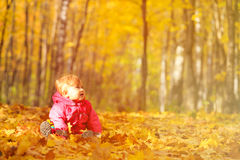 Happy cute little girl in autumn leaves. Fall activities Stock Photography