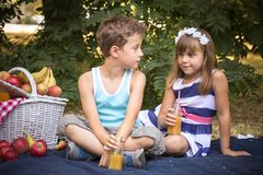 Happy cute little girl and a boy are sitting on a blanket. In the park and playing in a beautiful sunny summer day.  They look into each other`s eyes. First Royalty Free Stock Photo